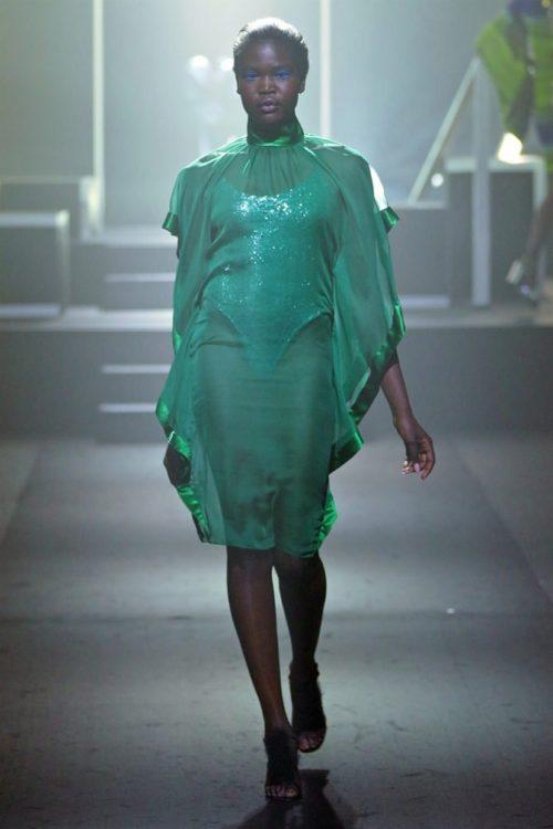 Moth Dress 1